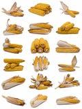 Accumulazione dei Corncobs. Fotografia Stock