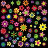 Accumulazione dei fiori di estate Fotografia Stock Libera da Diritti