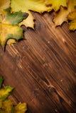 Accumulazione dei fogli di autunno Fotografia Stock Libera da Diritti