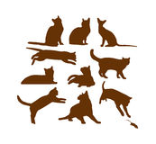 Accumulazione dei gatti royalty illustrazione gratis