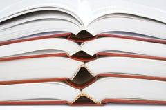 Accumulazione dei libri Immagine Stock
