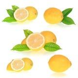 Accumulazione dei limoni Immagini Stock