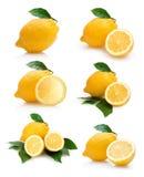 Accumulazione dei limoni Fotografia Stock