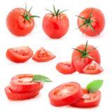Accumulazione dei pomodori Fotografie Stock