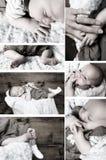 Accumulazione del bambino Immagini Stock