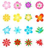 Accumulazione del fiore di vettore Fotografia Stock Libera da Diritti