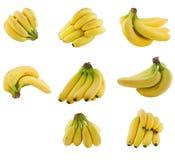 Accumulazione del gruppo di terminali delle banane Immagini Stock