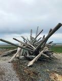 Accumulazione del legname galleggiante sulla spiaggia di Qualicum, BC Immagine Stock Libera da Diritti