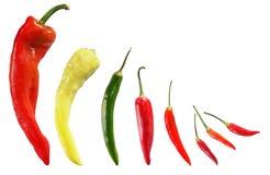 Accumulazione del pepe di peperoncini rossi Fotografia Stock Libera da Diritti