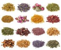 Accumulazione del tè di erbe e del fiore fotografia stock libera da diritti