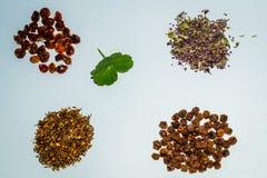 Accumulazione del tè di erbe e del fiore Immagine Stock Libera da Diritti