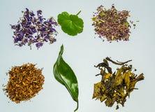 Accumulazione del tè di erbe e del fiore Fotografie Stock Libere da Diritti