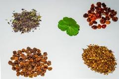 Accumulazione del tè di erbe e del fiore Immagine Stock