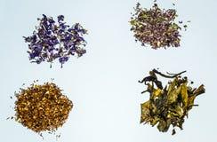 Accumulazione del tè di erbe e del fiore fotografia stock