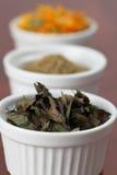 Accumulazione del tè - menta Fotografia Stock Libera da Diritti