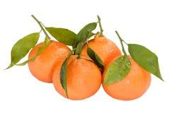 Accumulazione della frutta del mandarino Fotografia Stock
