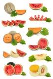 Accumulazione della frutta del melone Fotografia Stock Libera da Diritti