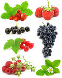 Accumulazione della frutta di bacca isolata su bianco Fotografia Stock