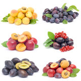 Accumulazione della frutta fresca Immagini Stock Libere da Diritti