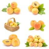 Accumulazione della frutta fresca dell'albicocca Immagine Stock