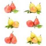Accumulazione della frutta fresca della pera Immagini Stock