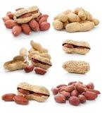 Accumulazione della frutta secca dell'arachide isolata Fotografie Stock Libere da Diritti