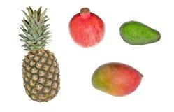 Accumulazione della frutta tropicale Fotografie Stock