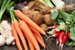 Accumulazione della verdura fresca Immagini Stock Libere da Diritti