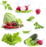 Accumulazione della verdura fresca Fotografie Stock