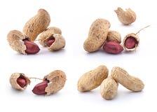 Accumulazione delle arachidi Fotografia Stock