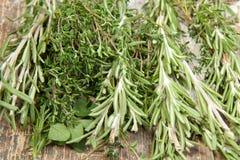 Accumulazione delle erbe Fotografia Stock