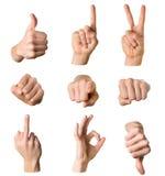 Accumulazione delle mani su priorità bassa bianca Fotografia Stock