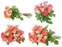 Accumulazione delle rose Fotografia Stock