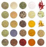 Accumulazione delle spezie e delle erbe differenti Fotografia Stock