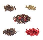 Accumulazione delle spezie isolate su bianco Fotografia Stock
