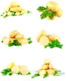 Accumulazione di giovani patate, prezzemolo. Isolato Immagine Stock