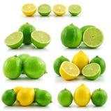 Accumulazione di limetta matura e del limone isolati Fotografia Stock