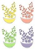 accumulazione Insieme dell'illustrazione di vettore Fiore, pianta, crescente in un vaso Piantine della pianta Illustrazione di ve illustrazione vettoriale
