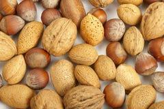 Accumulazione Nuts Immagine Stock