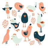 Accumulazione sveglia degli uccelli Fotografia Stock Libera da Diritti