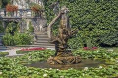 Accumulez avec des nénuphars et une fontaine entre les arbustes et les fleurs décoratifs images stock