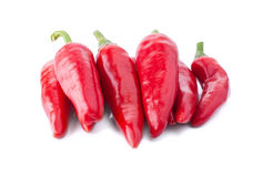 Accurate Heap of Hot Red Peppers Stock Photography