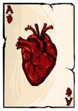 Ace av hjärtor på vit bakgrund illustration royaltyfri illustrationer