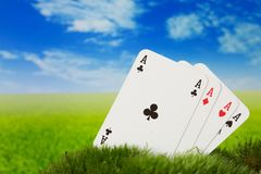 Ace card on the meadow. Aces on green fresh moss Stock Images