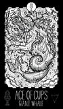Ace of cups. Giant whale Royalty Free Stock Photography