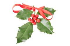 Acebo con la cinta roja, decoración de la Navidad Foto de archivo libre de regalías