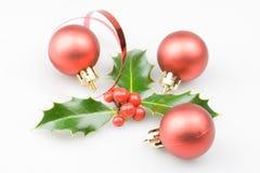 Acebo de la Navidad Foto de archivo