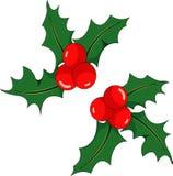 Acebo de la Navidad ilustración del vector