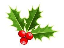 Acebo de la Navidad. Ejemplo del vector. ilustración del vector