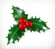 Acebo, decoración de la Navidad Fotografía de archivo